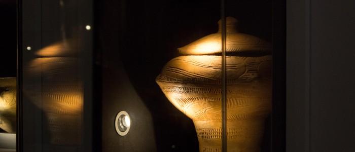 Muzeul Universităţii A.I. Cuza, Iasi